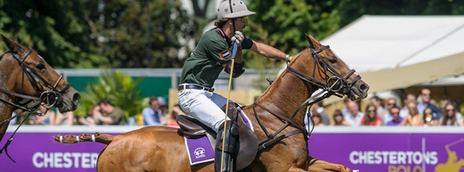 Chestertons Polo in the Park - 5 reasons you'll love it!